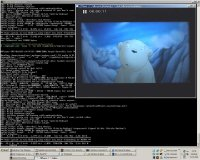MPlayer pod Windows XP